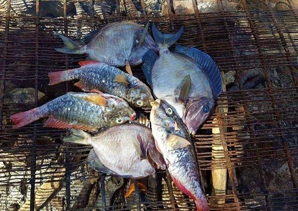 Seafood Jamaika