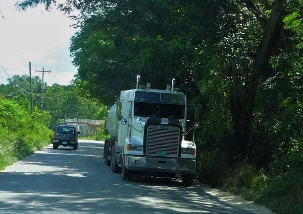 Jamaikanischer Truck