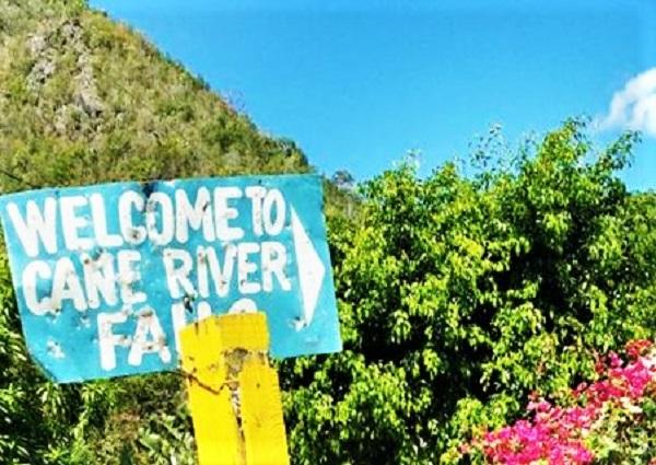 Hinweisschild Cane River Falls Jamaika