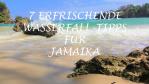 Wasserfall Erfahrungen und Tipps für Jamaika