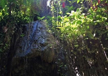 Somerset Falls Jamaika
