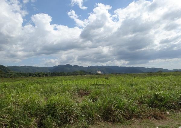 Landschaft im Westen Jamaikas